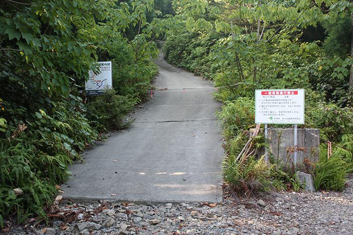 龍神杉への入り口