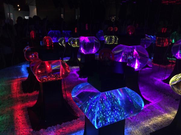 ライトアップされた水槽の展示物
