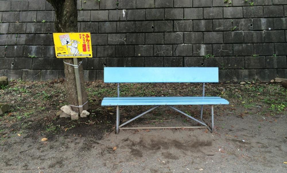 じんたんが座っていたベンチ
