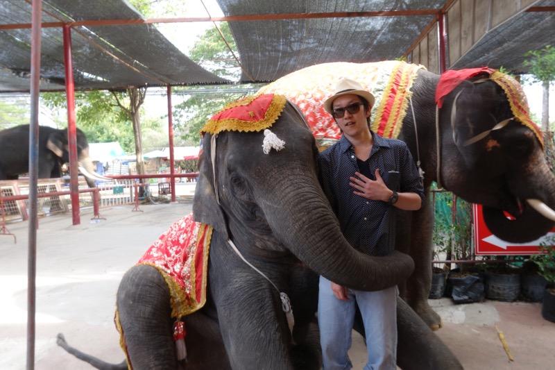 象と写真撮影