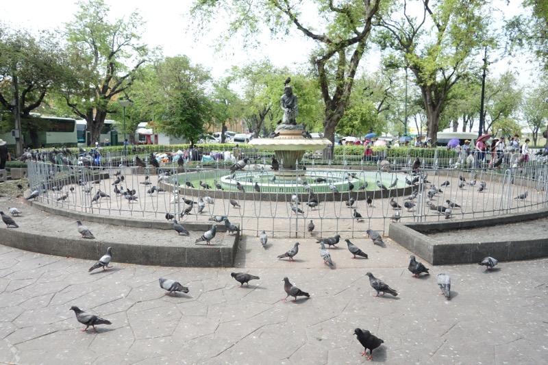王宮エリア近くの公園