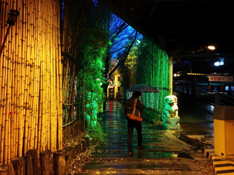 入り口が竹林道