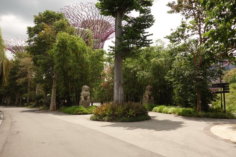 スーパーツリーブルーム(Super Tree Bloom)