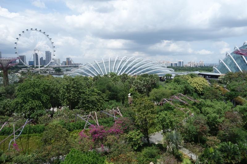 シンガポール・フライヤーも見える
