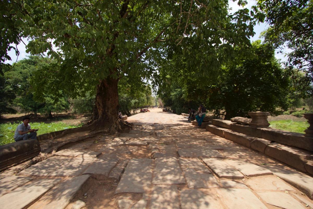 遺跡の正門までの道