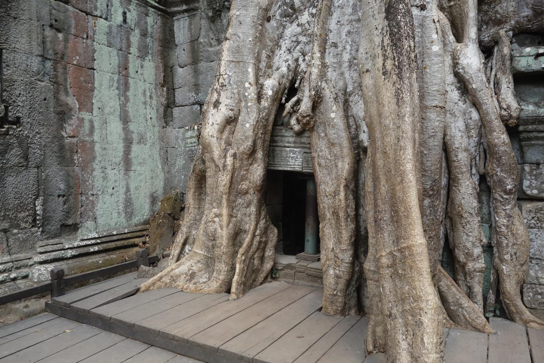 侵食された仏塔