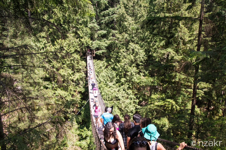 リーンキャニオンの吊り橋