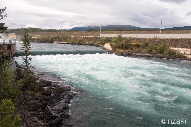ユーコン川